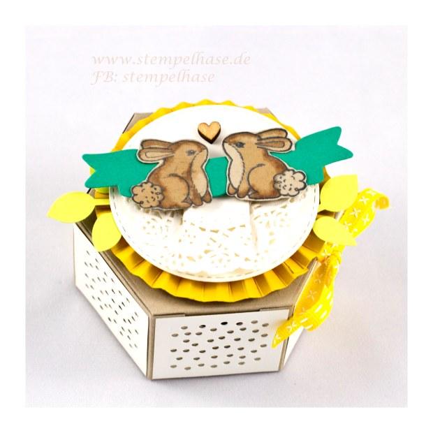 Window Box - #Fensterschachtel mit Garden Girl *** Werbung *** Du suchst eine schnelle #Verpackung für #Ostern? Die #Fensterbox ist genau das Richtige DIY Projekt. Schnell die 2 Teile zusammengeklebt, eine Rosette obenauf, das Stempelset #gardengirl von #stampin up eine Schleife und schon hast du Deine #Geschenk #Box fertig. Das ist doch leicht. Mehr Ideen findest Du unter www.stempelhase.de #stempelhase #windowbox #stampinup #Leaf #Punch #blätterstanze # Osterhase #hase