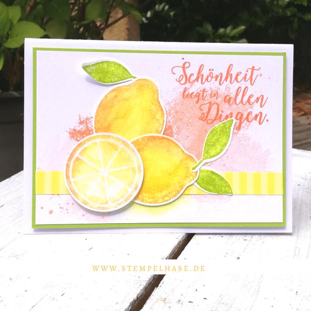 """Stempelsets: Lemon Zest - Jahr voller Farben - Artisan Textures ***Werbung*** Mit den #Zitronen von #Stampin´ Up! kannst du sommerlich frische #DIY #Karten zaubern. Die Karte mit dem schönen Spruch: """"Schönheit liegt in allen Dingen"""" ist besonders gut als kleiner Gruß zum #Geburtstag, zum #Hallo sagen oder als kleine Aufmunterung für zwischendurch geeignet. #stempelhase #lemonzest #lemon #Jahrvollerfarben #stampinup # artisantextures #stamps #stampinupdeutschland #lemonade #card #selbstgemacht #cards #DSP"""