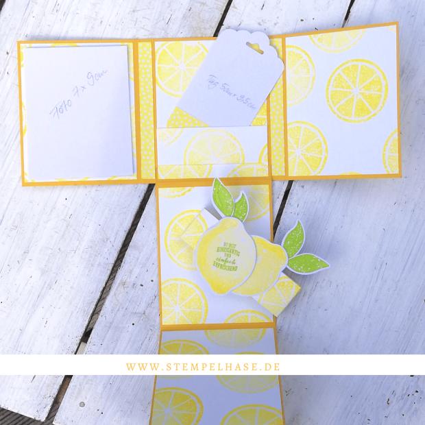 Minialbum mit dem Stempelset Lemon Zest von www.stempelhase.de ***Werbung*** Das Stempelset #lemonzest ist nicht nur für Karten geeignet, sondern auch für ein richtig tolles selbstgemachtes Designpapier. Und aus diesem Papier ist schnell ein kleines Minialbum hergestellt. Ein paar Fotos, kleine Nachrichten, vielleicht Zitronentee sind darin schnell verstaut, aufgeklebt und verschenkt. #stempelhase #lemonzest #lemon #happybirthday #stampinup #minialbum #stamps #stampinupdeutschland #card #album #selbstgemacht #DIY Viele weitere Ideen findest Du auf meinem Blog www.stempelhase.de