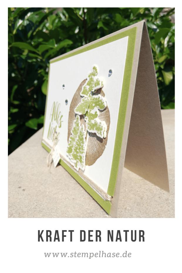 #kraftdernatur #stempelhase #stampinup #rootedinnature #naturespoem #naturesroots *Werbung* Diesmal musste ich die Bäume aus dem Stempelset Kraft der Natur ausprobieren. Die Bäume habe ich in Farngrün gestempelt und ausgestanzt. Du kannst auf meinem Blog die Materialien finden sowie die Stampin´ Up! Produkte bestellen. Weitere Karten mit diesem Stempelset findest Du auf meiner Homepage: www.stempelhase.de #natur #kiefer #tanne #geburtstagskarte #stampinup #stampinupdeutschland #stampinupdemonstrator
